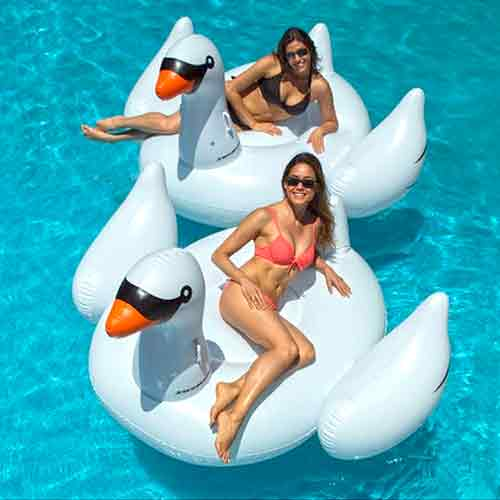 Swimline Giant Swan Ride-On